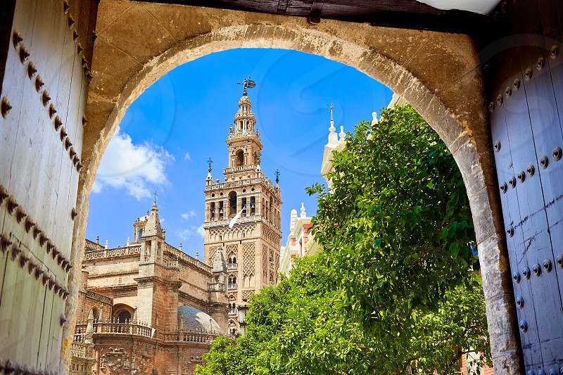 Seville cathedral Giralda tower from Alcazar arch door of Sevilla Andalusia Spain photo