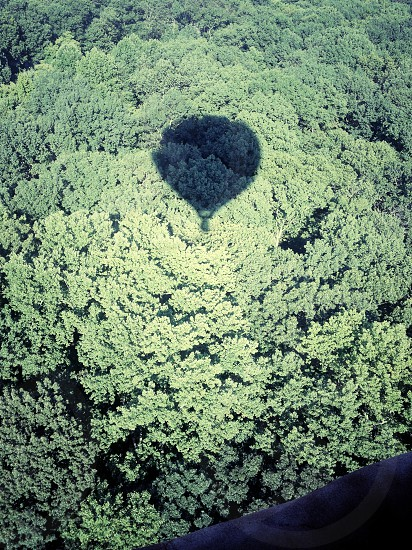 hot air balloon shadow on the forest  photo