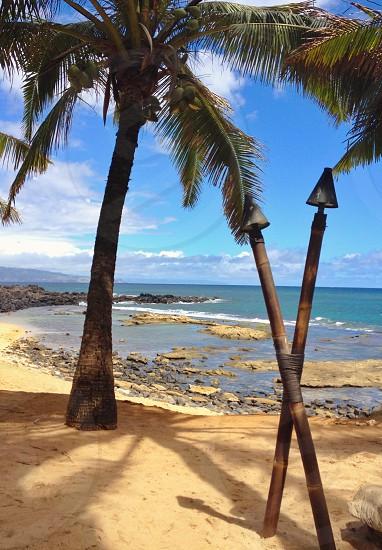 Maui Hi photo