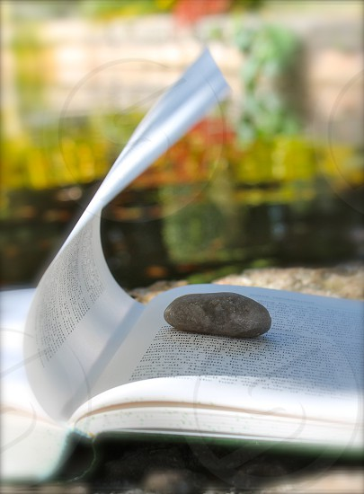 gray stone on top of book page photo