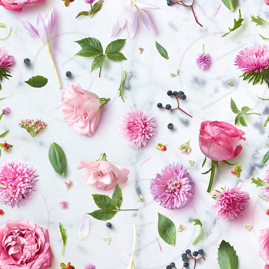 Elegance Seamless wallpaper pattern with flowers on pink background photo