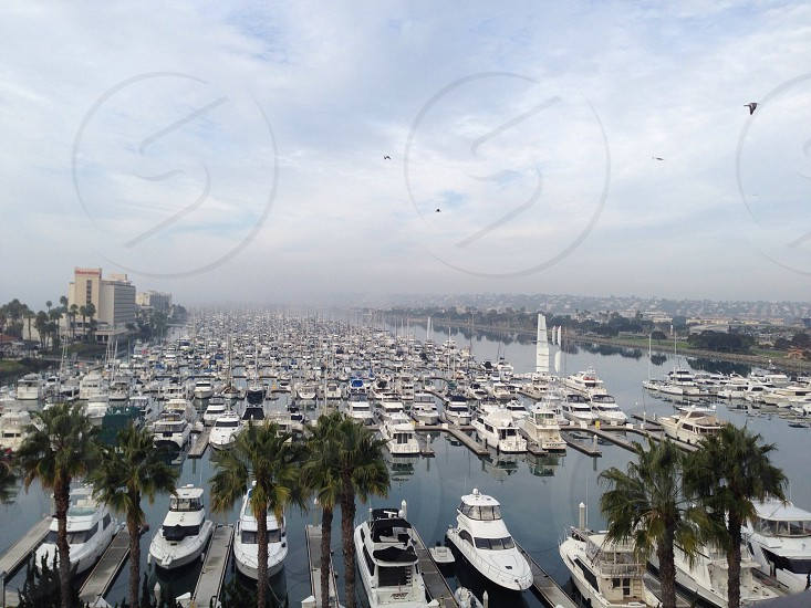 Fog over Harbor Island Marina San Diego CA  photo