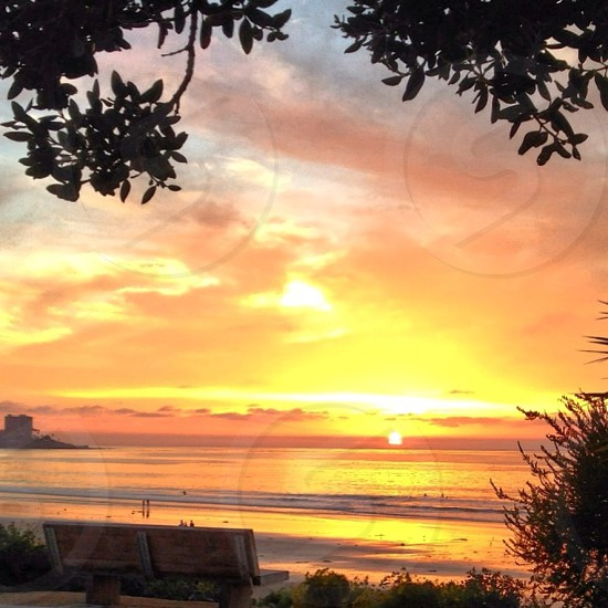 San Diego Sunsets Golden Hour photo