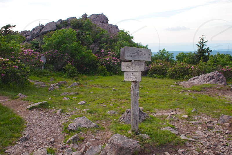 Confluence of hiking trails. Convergence. Signs. Which way to go. Hiking trails on mountaintop. photo