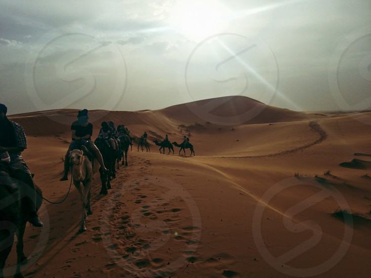 Sahara; desert; dry; landscape; travel  photo