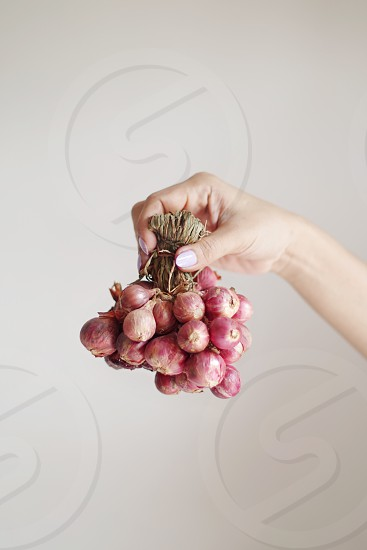 Holding the red onion bunch photo