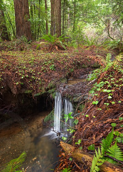 A waterfall in the mountains of Northern California. Color image day. photo
