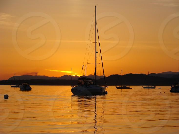 Sidney Spit Sunset photo