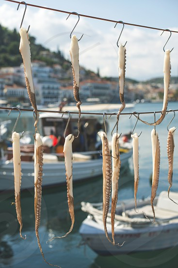 Octopus tied on rope and boats photo