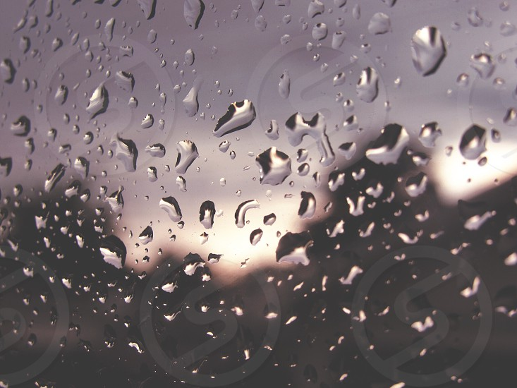 Macro droplets storm rain canon photo
