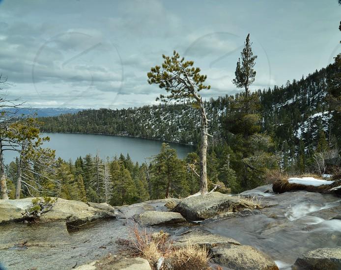 view of trees on mountain near lake photo