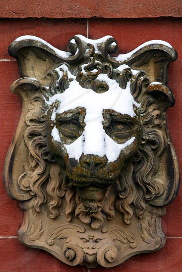 Antique decorative bronze lion's head on red wall with snow on face Heidelberg castle Heidelberg Germany photo
