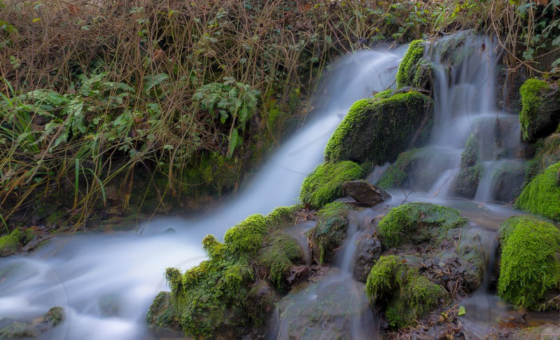 Moss green water river waterfall plants long exposure  photo