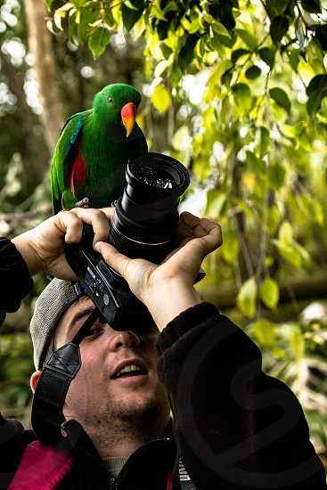 man holding bridge camera with green long beaked bird perched on his head photo