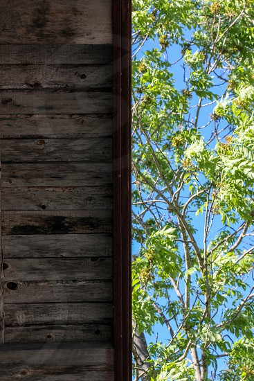 abstract shots from and 1800s building in Sweden photo