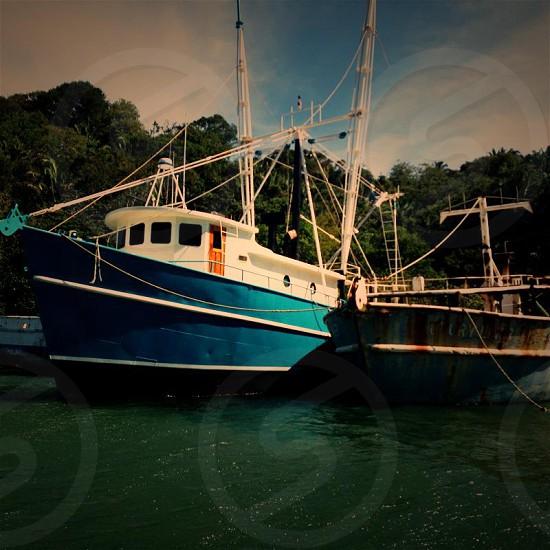 Tropical Boats photo