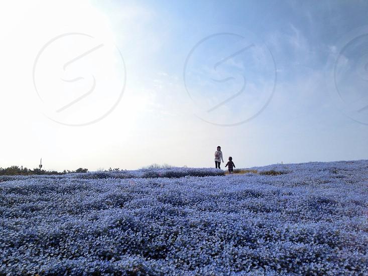 2 people on white flower fiel photo