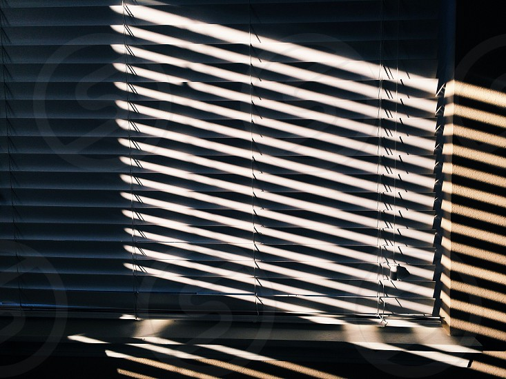 window blinds photo