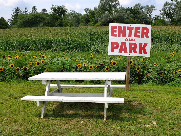 enter and park signage near white picnic table photo