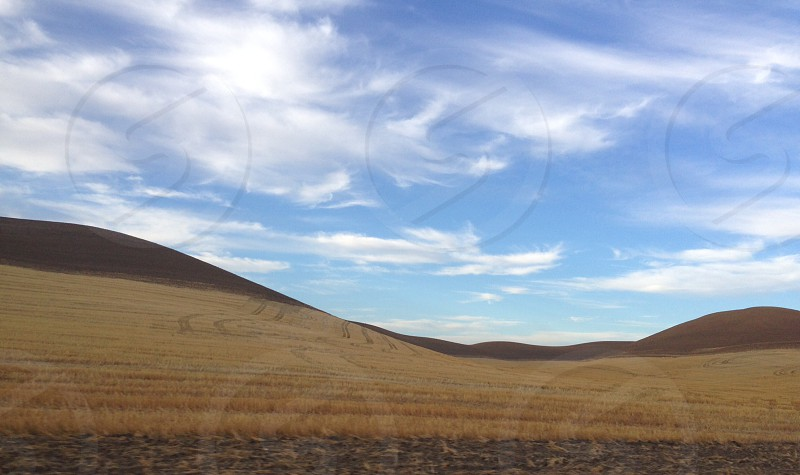 Rolling hills of the Palouse region of North Idaho photo