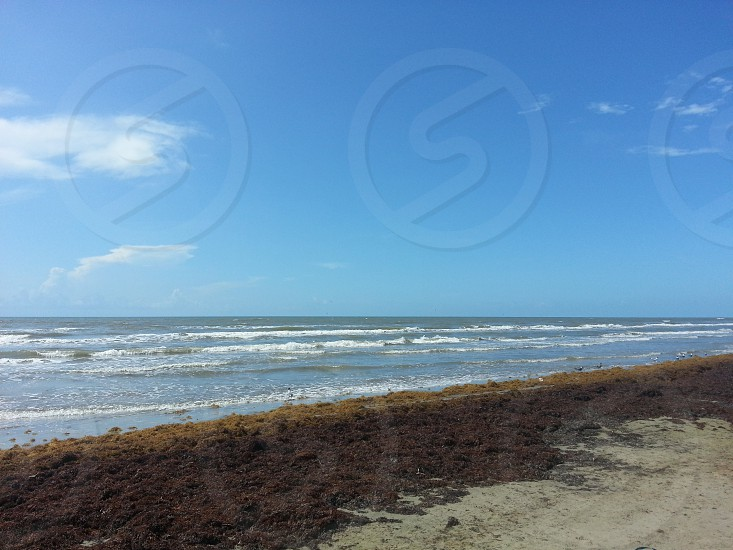 Galveston beach photo