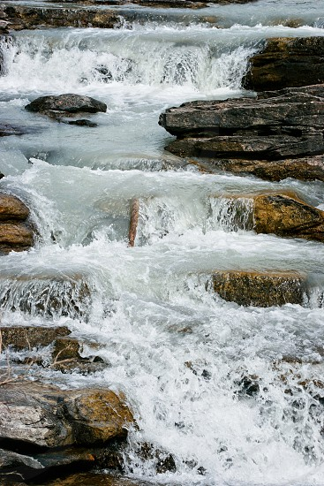 Rapids on the Athabasca River in Jasper National Park photo