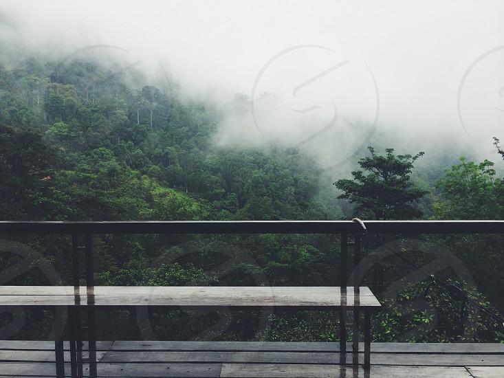 A foggy morning - F2 photo