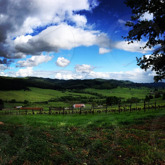 cloudy blue sky over farm houses and green hills photo