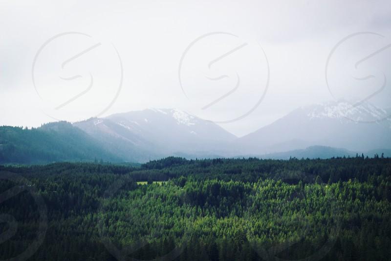 green grass filed near mountain photo