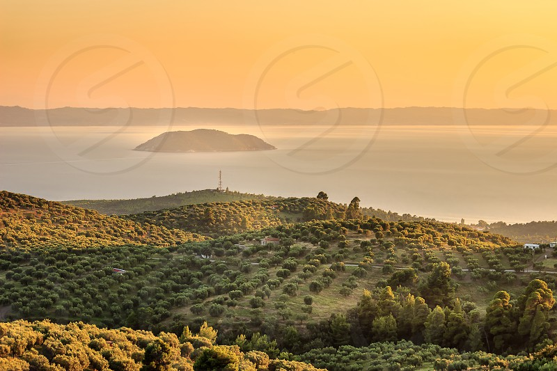 Hazy golden hour view of olive plantation above the sea and distant Turtle island in Greece near Neos Marmaras photo