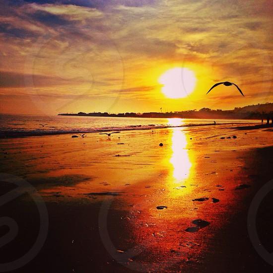 Sunset at East Beach in Santa Barbara CA. photo
