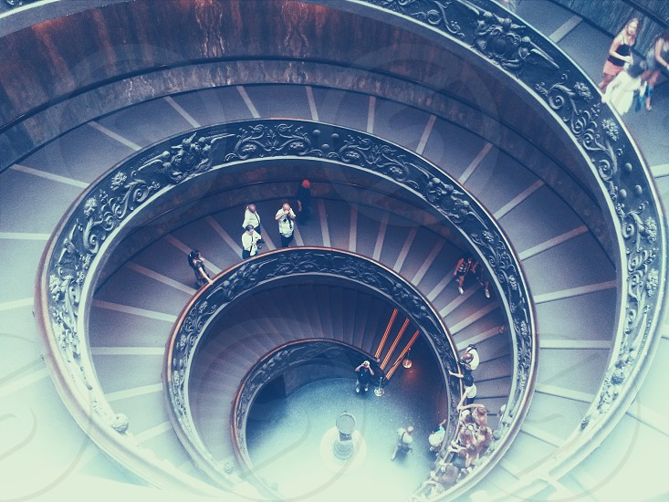 vatican rome stairs circle stairs photo