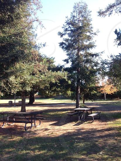 Jollyman Park photo