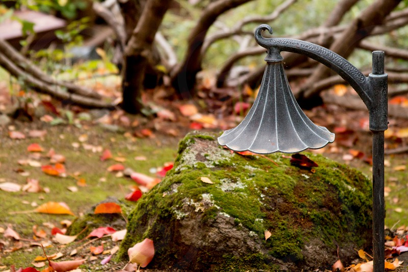 Wrought iron light with autumn colors photo