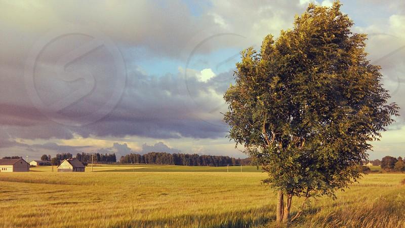 Calm autumn. photo
