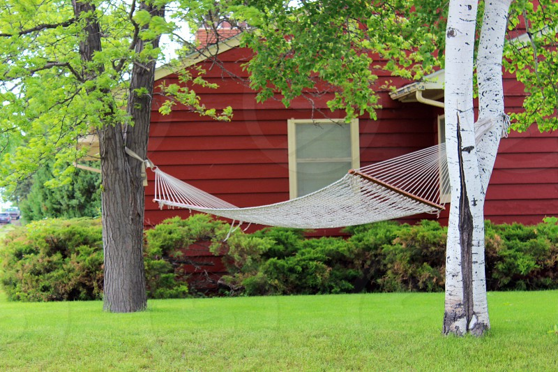 white hammock tied between two white and brown trees beside red house and green leafy plants photo