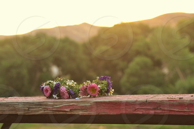 Flower crown tradition Solstice pink table outdoors evening sunset Latvian flowers  photo