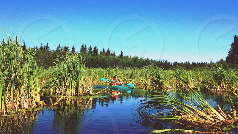 man in canoe on swamp photo