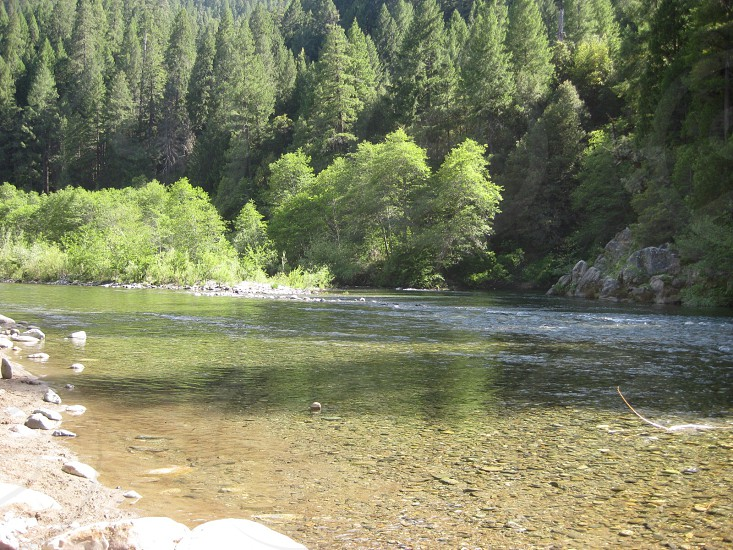 Yuba River near Downieville Ca.  photo