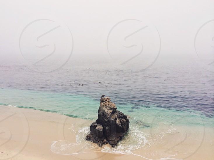 white sand beach photo