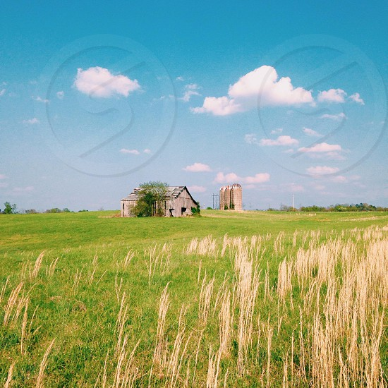 Farm Field. photo