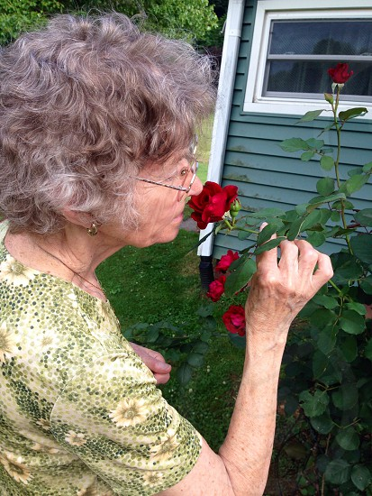 Mom taking time to smell the roses.  photo