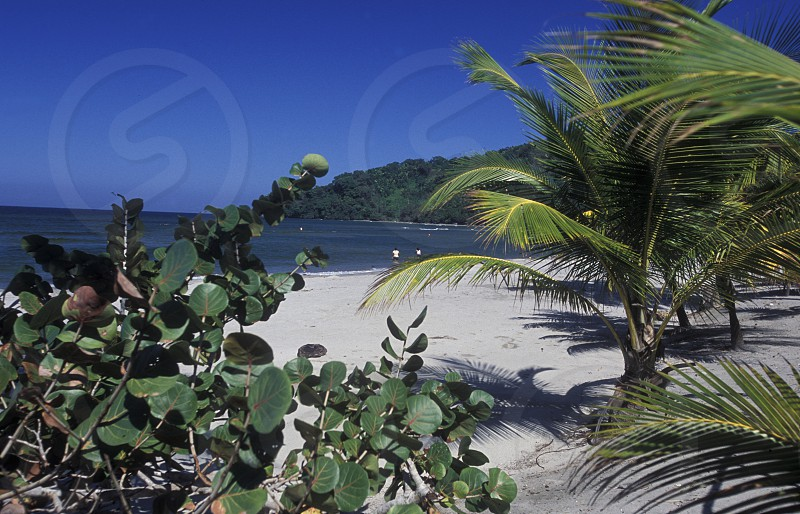 the Beach of Tela near San Pedro Sula on the caribian sea in Honduras in Central America photo
