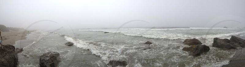 Bodega Bay photo