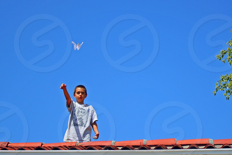 """""""Up in the Air""""  Little boy launches a paper plane from the roof of a house photo"""