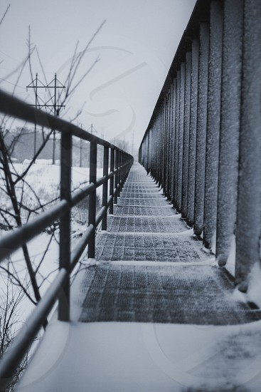 Snow covered pathway - vertical photo