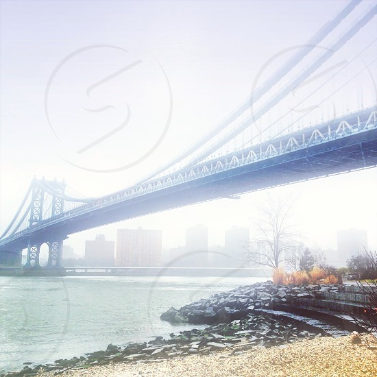 blue body of water under gray suspension bridge photo