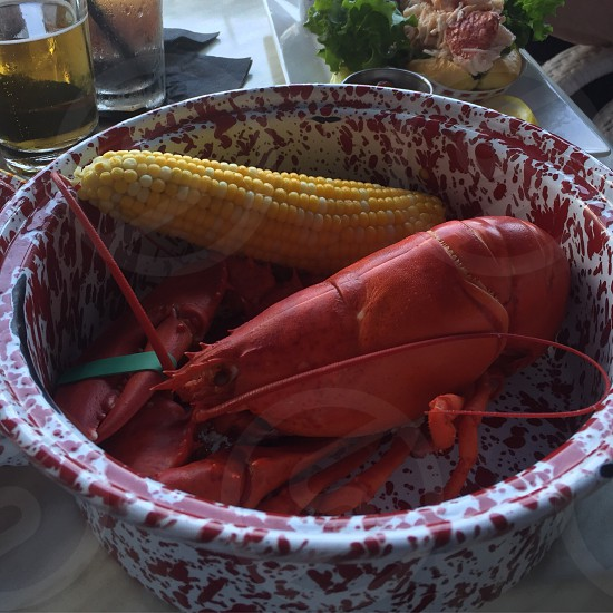 Lobster dinner New England  photo