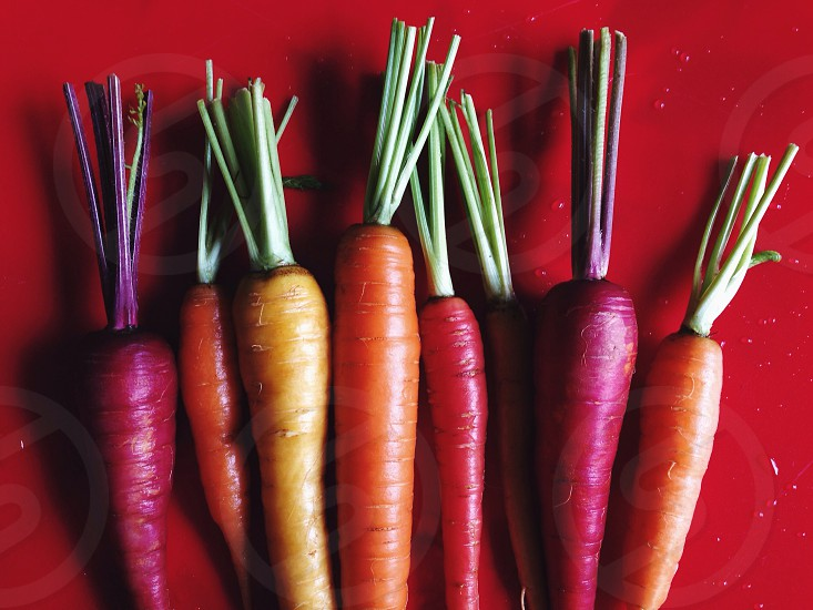 red carrots photo
