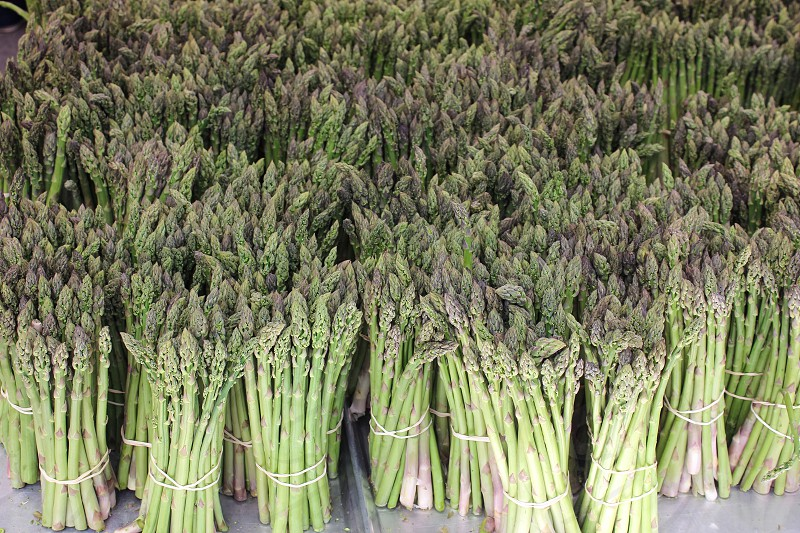 bundled asparagus on display photo